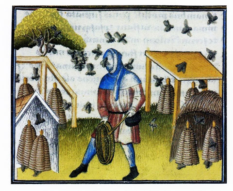 illustration of a fearless beekeeper from an illuminated manuscript